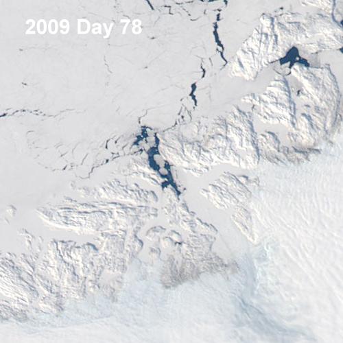 2009078