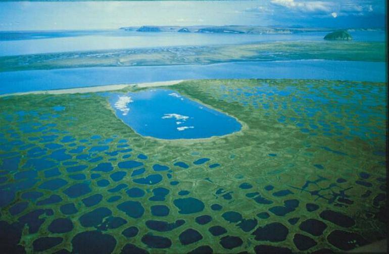 Image result for lena river delta images