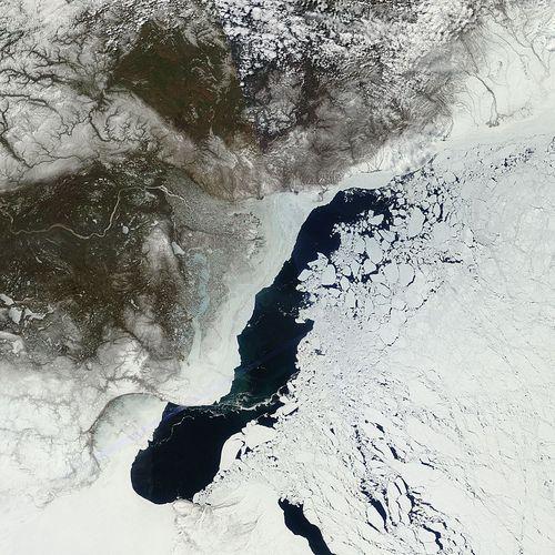Arctic_r05c02.2011143.terra.1km