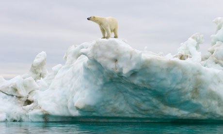 Melting-Arctic-ice-releas-007