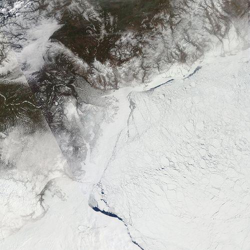 Arctic_r05c02.2009143.terra.1km
