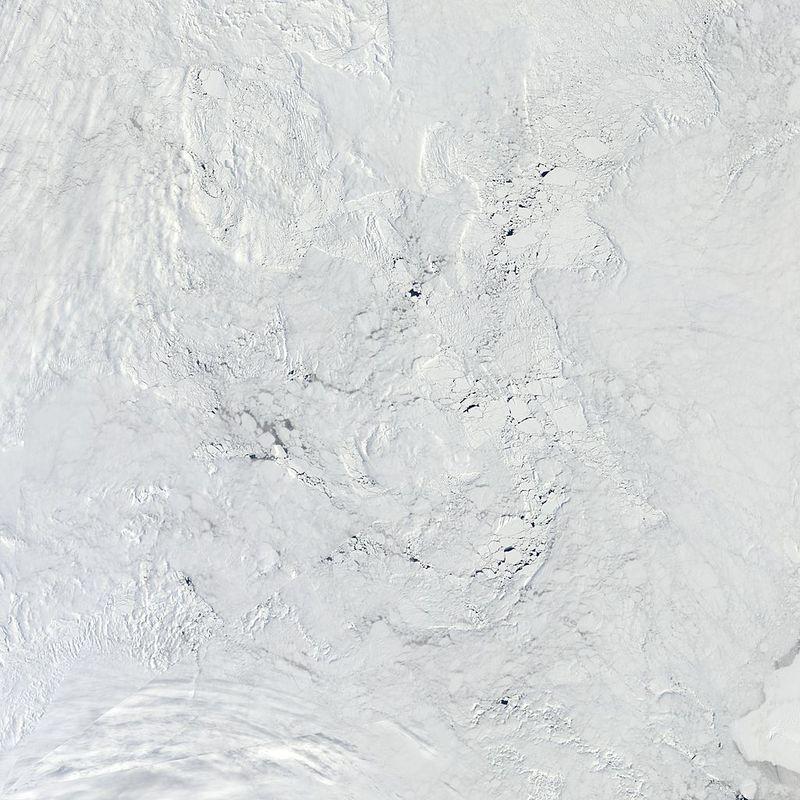 Arctic_r04c04.2013154.terra.1km